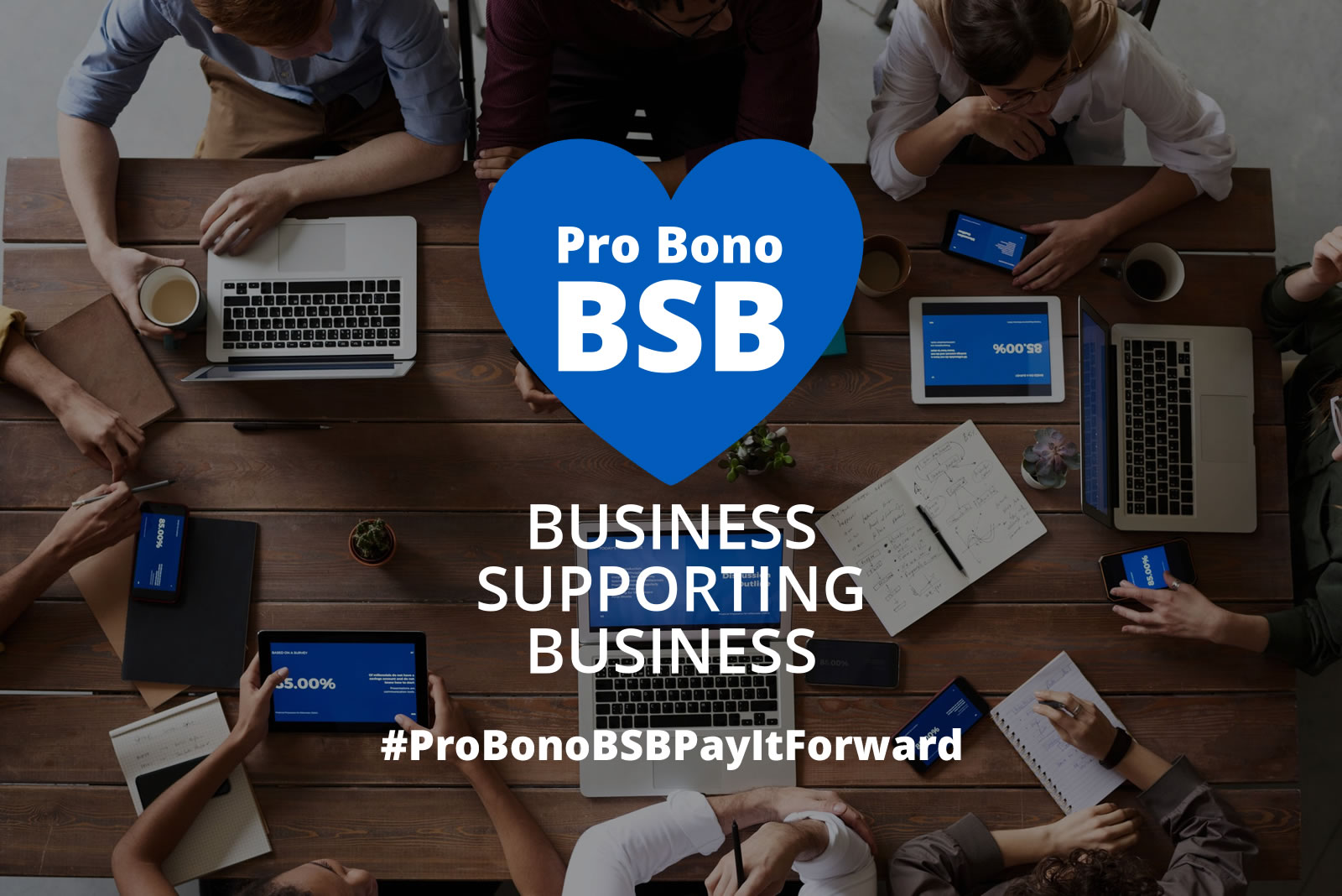 Pro Bono Business Supporting Business image